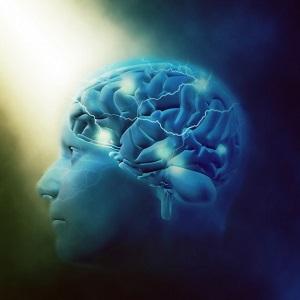 受験の知識を、長期記憶に定着させる方法