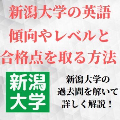 新潟大学の英語