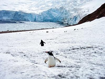 氷雪気候 南極