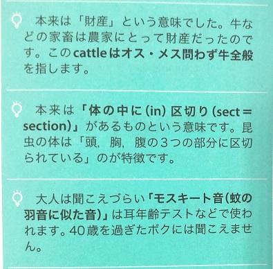 英単語Stock