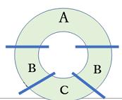 多細胞図1